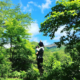 This Week in Toku Actor Blogs [5/15 to 5/21]